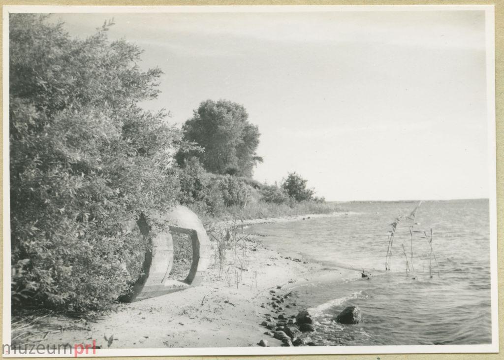 wizerunek  Brzeg jeziora Śniardwy